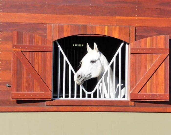 Timber horse stable shutter unit with anti weave grill open