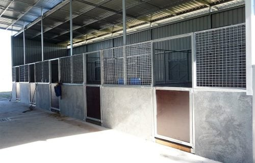 Breezeway barn half height precast concrete and mesh stable walls steel frame form ply lined swinging stable door rear wall colorbond shutter